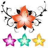 Floral design. With grunge elements vector illustration