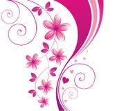 Floral design. Stock Image