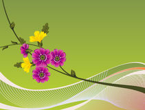A floral Design Background Stock Photography