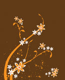 A floral Design Background Royalty Free Stock Photo