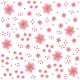 Floral design   background Stock Photos