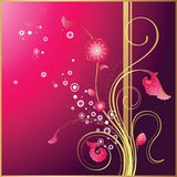 Floral Design Background Stock Images