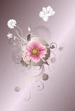 Floral design background Stock Image