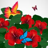 Floral design background. Hibiscus flowers with bird, butterflie. S Stock Illustration