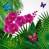 Floral design background. Orchid flowers with butterflies. Vector stock illustration