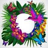 Floral design background. Tropical orchid flowers, birds and but stock illustration