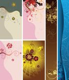 Floral Design Backgrounds Royalty Free Stock Image