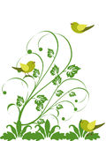 Floral design with birds Royalty Free Stock Photo