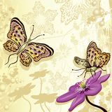 Floral design with butterflies. Vector illustration Royalty Free Illustration