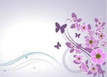 Floral design card vector illustration