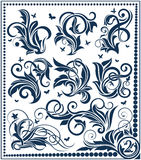 Floral design element collection Stock Images