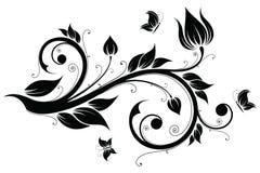 Floral design element,  illustration Royalty Free Stock Photo
