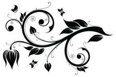 Floral design element. Vector illustration Stock Image