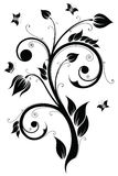 Floral design element. Vector illustration Royalty Free Stock Image