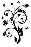Floral design element. Vector illustration Royalty Free Stock Image