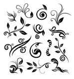 Floral design elements. Stylized abstract floral design elements Stock Image