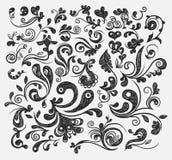 Floral design elements. A floral vintage design elements design Royalty Free Stock Images