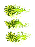 Floral design elements Stock Images