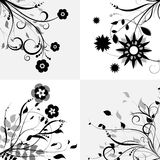 Floral design elements Stock Photo