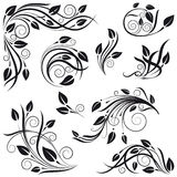 Floral design elements. A set of floral design elements Royalty Free Stock Photo