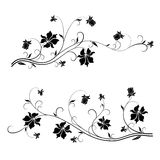 Floral design elements. Set of floral design elements with swirls Royalty Free Stock Photos