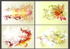 Floral design elements Royalty Free Stock Photos