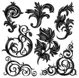 Floral design elements. Set of floral design elements isolated on white Royalty Free Stock Photo