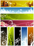 Floral design elements Royalty Free Stock Photography