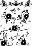 Floral design elements. In black and white Royalty Free Stock Image