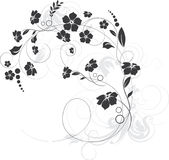 Floral design elements Stock Image