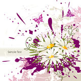 Floral design elements and background Stock Photos