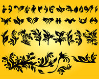 Floral design elements and background Royalty Free Stock Image