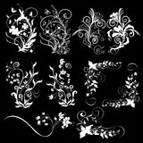 Floral design elements black background Royalty Free Stock Image