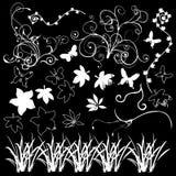 Floral design elements black background royalty free stock photos