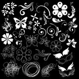 Floral design elements black background Stock Photography