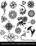 Floral design elements collection. Floral & ornate forms collection. Vector illustration. Objects isolated on a white background Stock Photography