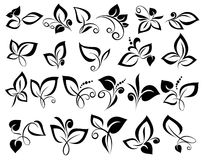 Floral design elements Stock Photography