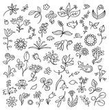 Floral Design Elements Outlines Royalty Free Stock Image