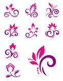 Floral design elements. Vector flower icons Stock Photo
