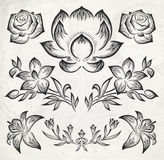 Floral design elements. vector illustration Royalty Free Stock Photos