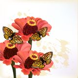 Floral design with flowers and butterflies Royalty Free Stock Images