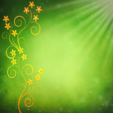 Floral Design on Gradient Green Background Royalty Free Stock Images