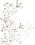 Floral design, grassy ornament, vector illustration Stock Image