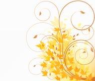 Floral design illustration Stock Photos