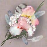 Floral design iris, bouquet Stock Image