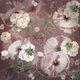 Floral design , poppy bouquet Stock Image