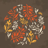 Floral design. Round composition with hand drawn leaves and plants, could be used as greeting card or invitation stock illustration