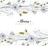 Floral design template. Doodle wildflowers. Flower frame. Vector illustartion stock illustration