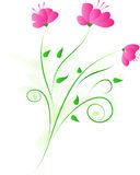 Floral design with three pink flower. Vector floral decorative ornament with three pink flower Stock Images