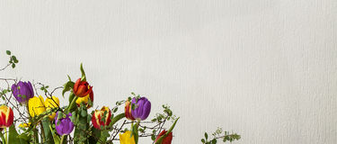 Floral Design - Tulips. Floral Pattern Design on ribbed white background with tulips stock photography
